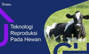 teknologi reproduksi pada hewan